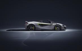 Picture McLaren, supercar, side view, Spider, MSO, 2019, 600LT