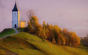 Picture autumn, trees, landscape, nature, fog, slope, hill, Church, Slovenia, Yamnik