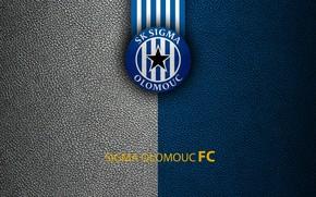Picture wallpaper, sport, logo, football, Sigma Olomouc