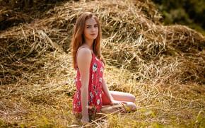 Picture look, girl, pose, hay, Alexey Gilev, Alexey Gilev
