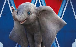 Picture eyes, elephant, cartoon, circus, ears, trunk, elephant, Dumbo, Dumbo
