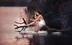 Picture water, girl, nature, dress, brunette, snag, the bushes, Olesya Efanova