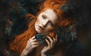 Picture look, girl, branches, face, butterfly, portrait, hands, red