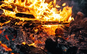 Picture flame, wood, the fire, embers