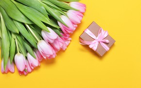 Picture yellow, background, bouquet, tulips, pink