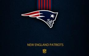 Picture wallpaper, sport, logo, NFL, New England Patriots