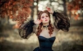 Picture autumn, leaves, makeup, dress, neckline, Olga Boyko