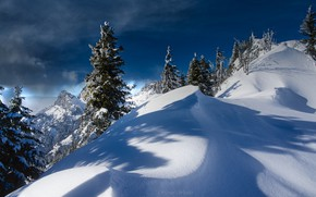 Picture winter, snow, trees, landscape, mountains, nature, Austria, ate, Alps, the snow, shadows, Tyrol