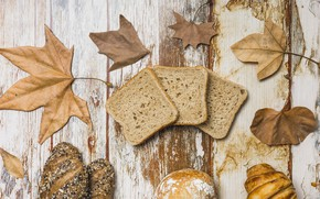 Picture autumn, leaves, background, tree, colorful, bread, wood, cakes, background, autumn, leaves, autumn, maple