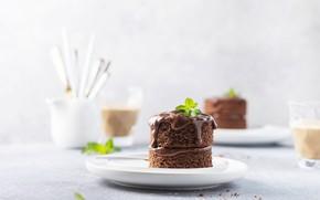 Picture cake, dessert, chocolate