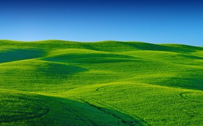 Picture the sky, grass, field, hill