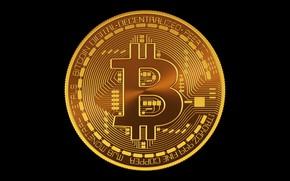 Picture black, black, fon, coin, bitcoin, btc