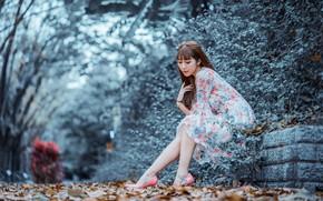 Picture autumn, leaves, Park, dress, legs, Asian, bokeh