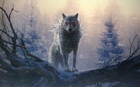 Picture cold, fear, wolf, werewolf, burning eyes, werewolf, mater, dark place, fog in the forest, by …