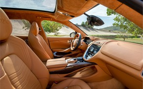 Picture leather, Aston, Aston, salon, Martin, 2020, Aston Martin DBX