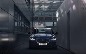 Picture Jaguar, sedan, front view, Jaguar XF, 2020, XF