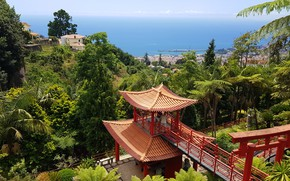 Picture nature, Park, island, Madeira Island, Monte Palace Tropical Gardens