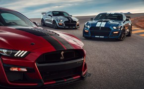 Picture blue, Mustang, Ford, Shelby, GT500, the hood, three, bloody, 2019, gray-silver