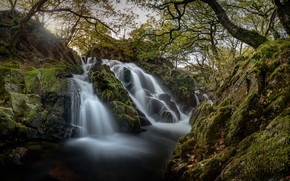 Picture stones, waterfall, moss, river