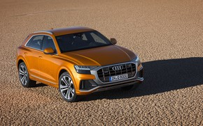 Picture the view from the top, Quattro, 2018, crossover, S-Line, 50 TDI, Audi Q8