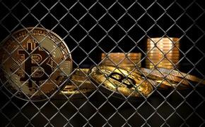 Picture mesh, grid, ban, coins, bitcoin, bitcoin, btc