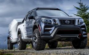 Picture vegetation, Nissan, pickup, the trailer, primer, 2018, Navara, Dark Sky Concept