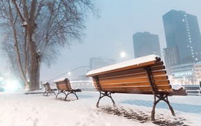 Picture city, winter, snow, tree, buildings, cold, urban, mist, Bench, skycrapers
