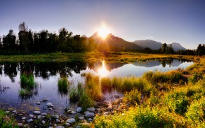 Picture forest, grass, the sun, light, mountains, lake, shore, the evening, pond