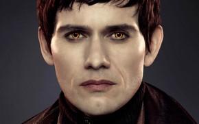 Picture vampire, The Twilight Saga Dawn, The Twilight Saga Breaking Dawn - Part 2