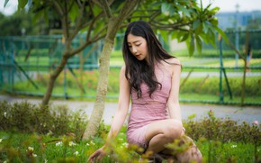Picture grass, girl, sweetheart, Asian, sitting, bokeh