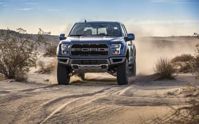 Picture Ford, Dust, Desert, Lights, Raptor, F-150, 2019, Ford F-150 Raptor