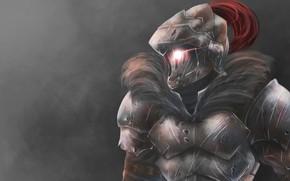 Picture knight, Goblin Slayer, The killer of goblins