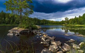 Picture forest, the sky, water, lake, stones, tree
