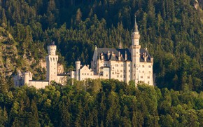 Wallpaper forest, trees, castle, Germany, Bayern, Germany, Bavaria, Neuschwanstein Castle, Neuschwanstein Castle, Schwangau, Schwangau