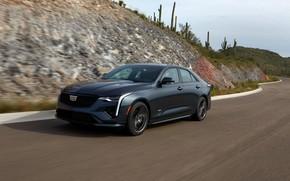 Picture road, movement, Cadillac, sedan, four-door, 2020, CT4-V