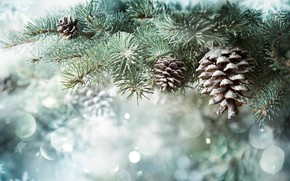 Picture winter, snow, branches, nature, background, spruce, New year, needles, snowfall, bumps, coniferous, bokeh, composition, spruce