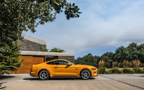 Picture orange, Ford, Parking, profile, 2018, fastback, Mustang GT 5.0