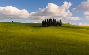 Picture greens, field, summer, clouds, trees, nature, blue, hills, space, Italy, track, path, cypress, Tuscany, blue …