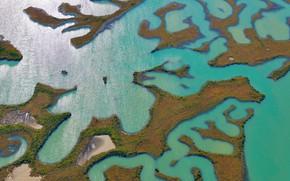 Picture water, Spain, swamp, Природный парк Баия-де-Кадис