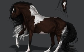 Picture horse, horse, art