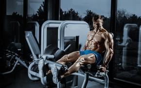 Picture power, workout, gym, bodybuilder