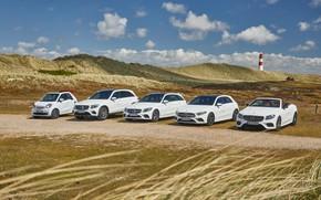 Picture mercedes benz, cabrio, suv, smart, c-class, a-class