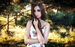 Picture girl, Model, long hair, dress, brown hair, photo, blue eyes, lips, face, brunette, portrait, smoky …