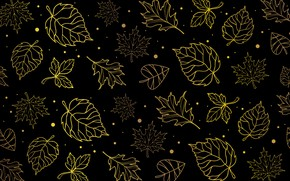 Picture autumn, leaves, yellow, pattern, foliage, texture, contour, black background, falling leaves, circles, different, maple, autumn, …