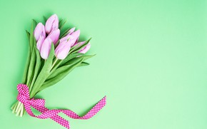 Picture flowers, bouquet, tape, tulips, pink, pink, flowers, beautiful, romantic, tulips, spring