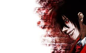 Picture wall, vampire, guy, Hellsing, Hellsing