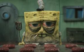 Picture yellow, cartoon, sponge, employee