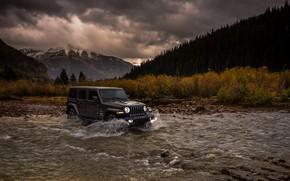 Picture stream, overcast, shrub, 2018, Jeep, dark gray, Wrangler Sahara
