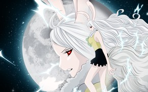 Picture girl, night, the moon, One Piece