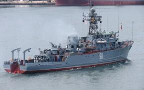 Picture sea, minesweeper, Ivan holubec
